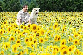 2011年夏はおとうさんとハッピーに日本が泣く「星守る犬」