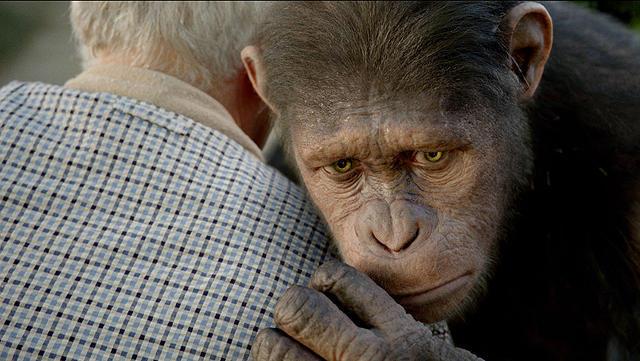 「猿の惑星:創世記(ジェネシス)」の画像2