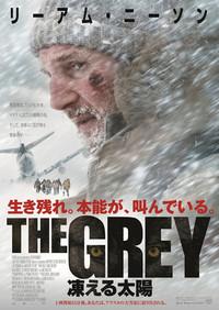 THE GREY 凍える太陽のポスター