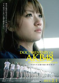 DOCUMENTARY of AKB48 No flower without rain 少女たちは涙の後に何を見る?のポスター