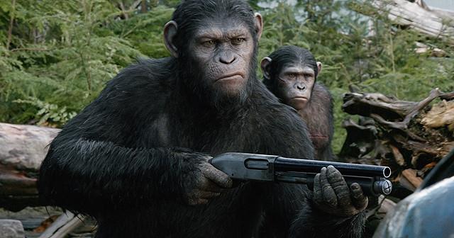 「猿の惑星:新世紀(ライジング)」の画像4