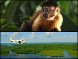 「アマゾン大冒険 世界最大のジャングルを探検しよう!」一般試写会