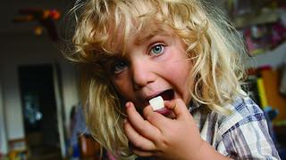 「シュガー・ブルース 家族で砂糖をやめたわけ」一般試写会