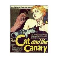 猫とカナリヤ